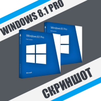 Скриншот Windows 8.1 Professional